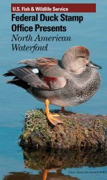 Federal Duck Stamp Office Presents - U.S. Fish and Wildlife Service