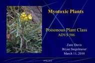 Myotoxic Plants
