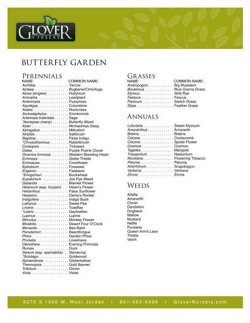 Erfly Garden Perennials Glover