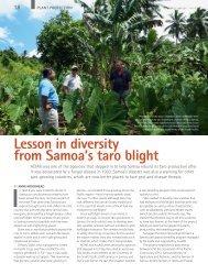 Lesson in diversity from Samoa's taro blight - Australian Centre for ...