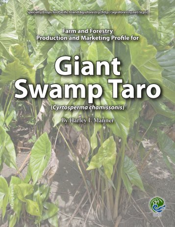 Giant swamp taro - Agroforestry Net