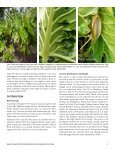 Giant swamp taro - Agroforestry Net - Page 3