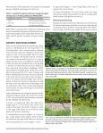 Giant swamp taro - Agroforestry Net - Page 5