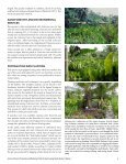 Giant swamp taro - Agroforestry Net - Page 6