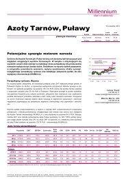 Azoty Tarnów, Puławy - Inwestycje