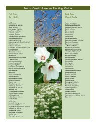 Plant List: Species by Light and Soil Requirements - North Creek ...