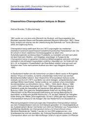 Chaenorhino-Chenopodietum botryos in Bozen - Ruderalvegetation