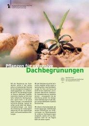 Pflanzen für extensive Dachbegrünungen - Stadtgärtnerei
