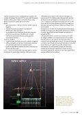 L'evoluzione dei grandi telescopi ottici: dal telescopio - Page 4