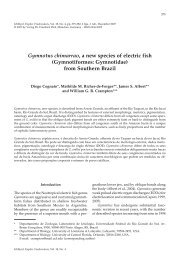 Gymnotus chimarrao, a new species of electric fish - University of ...