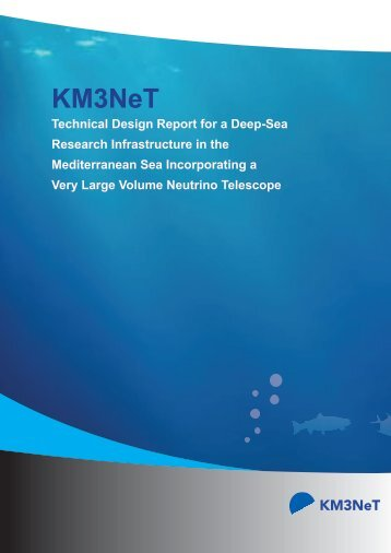 TDR (Technical Design Report) - KM3NeT