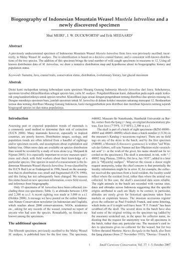 Biogeography of Indonesian Mountain Weasel Mustela lutreolina ...