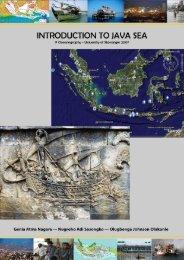 Introduction to Java Sea