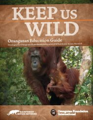 Keep Us Wild: Orangutan Education Guide - Rainforest Heroes