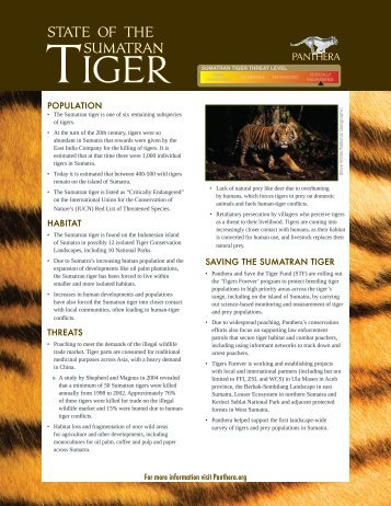 Sumatran Tiger Report Card - Panthera