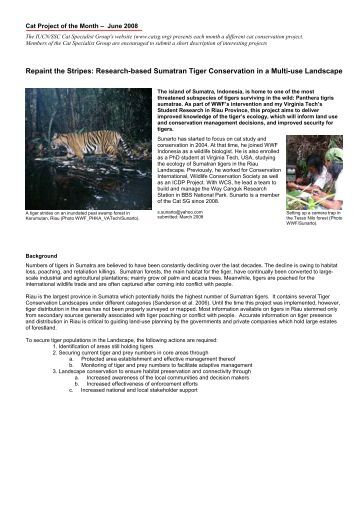 the action of tiger conservation Wcs works to conserve tigers in 8 of the 11 remaining range states in asia  in  action wcs has been working to protect wild tigers in western thailand's huai.