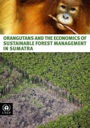 Orangutans and the Economics of Sustainable Forest ... - UNEP