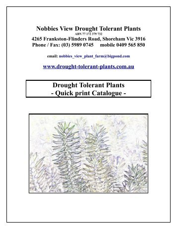 Drought Tolerant Plants - Quick print Catalogue -