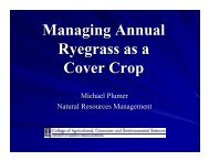Managing Annual Ryegrass as a Cover Crop
