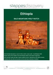 Ethiopia BALE MOUNTAINS WOLF WATCH - Steppes Discovery