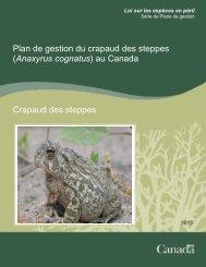 Crapaud des steppes (Anaxyrus cognatus) - Publications du ...