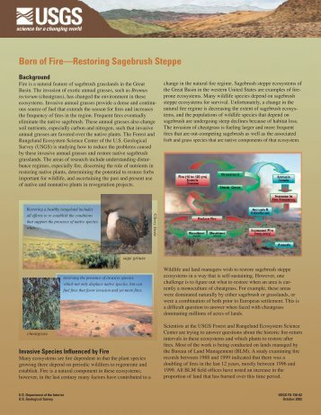 Born of Fire—Restoring Sagebrush Steppe - USGS Forest and ...