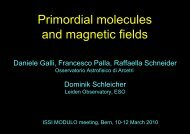 Primordial star formation and magnetic fields - ISSI