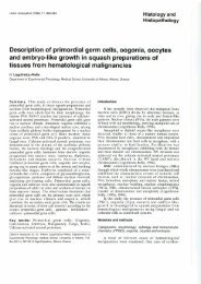 Description of primordial germ cells, oogonia, oocytes and ... - Digitum