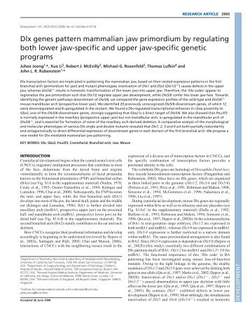 Dlx genes pattern mammalian jaw primordium by ... - Development