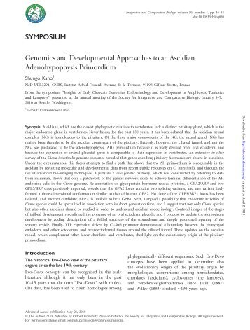 Genomics and Developmental Approaches to an Ascidian ...