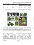 Roles of extensins in cotyledon primordium formation and shoot ... - Page 7