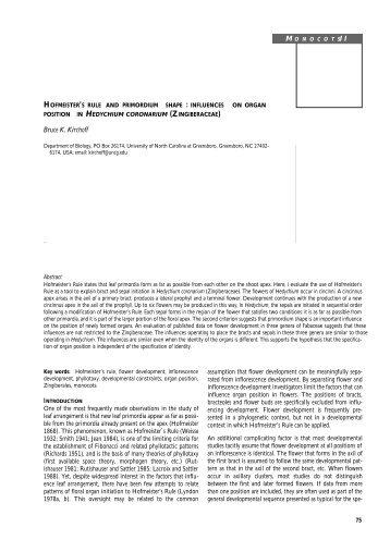 Hofmeister's Rule and Primordium Shape - The University of North ...
