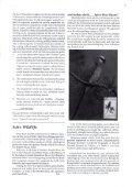 SOHO (STEAK/7@N - The Soho Society - Page 7