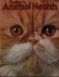 July-August 1977 - Animal Health Foundation