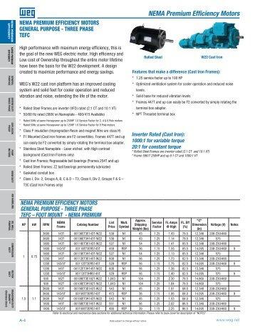 Nema premium xri marathon electric for Weg nema premium motors