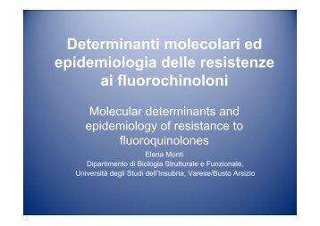 plasmid-mediated quinolone resistance