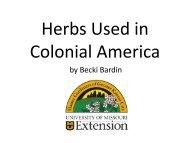 Colonial Herbs