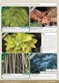 Spring Catalogue 2013 - Bowden Hostas - Page 3
