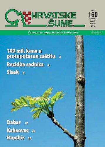 Jelenak (Phyllitis scolopendrium) - Hrvatske šume