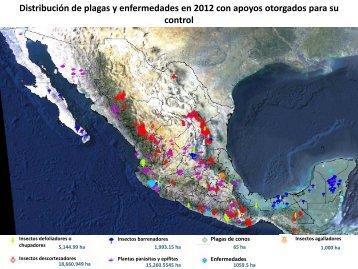 Distribución de Plagas y Enfermedades 2012 - Conafor