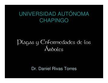 Plagas y Enfermedades de los Árboles - Daniel Rivas