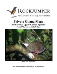 Download - Rockjumper Birding Tours