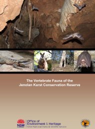 The Vertebrate Fauna of Jenolan Karst Conservation Reserve: Final