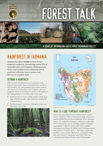 rainforest in tasmania - Forest Education Foundation