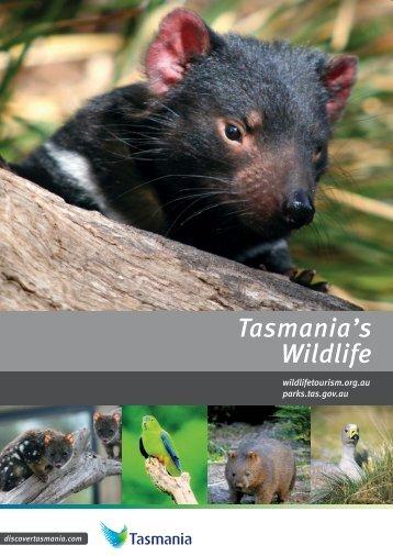 Tasmania's Wildlife - Discover Tasmania