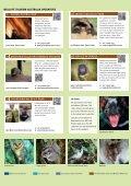 Tasmania's Wildlife - Discover Tasmania - Page 4