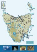 Tasmania's Wildlife - Discover Tasmania - Page 7