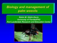 Biology and management of palm weevils - The Center for Invasive ...