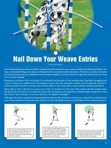 Nail Down Your Weave Entries - Clean Run