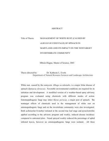 Arawtry thesis